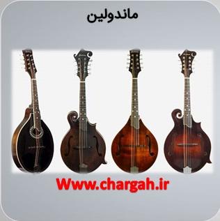 انواع سازها در موسیقی ماندولین یک ساز غربی زهی زخمه ای